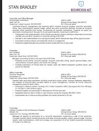 Example Of Federal Resume
