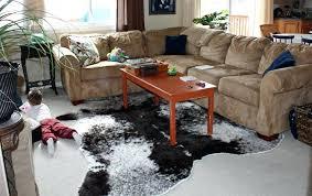 cowhide rug in living room brindle cowhide rug in living room styles gray cowhide rug in cowhide rug
