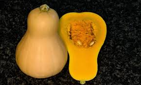 a whole and halved ernut squash against a dark background known for its nutty