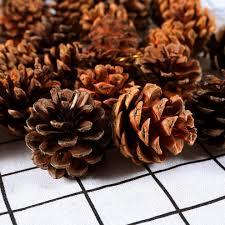 keriber 24 pieces 3 5 6cm pine cones with string natural pine cones pendant crafts