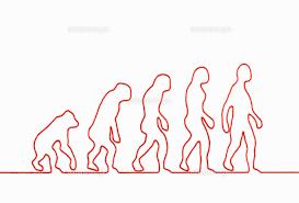 「進化」の画像検索結果