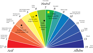 Ph Of Fruits Chart What Is The Alkaline Diet The Green Creator