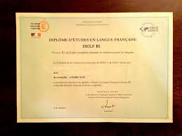 diploma the french turtle experience delfb1cert