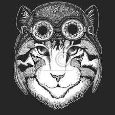 Fototapeta Obrázek Domácí Kočky Kreslený Ručně Pro Tetování Znak Odznak