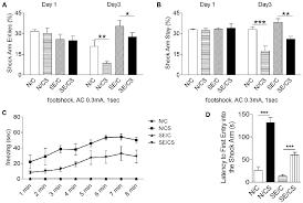 Frontiers Reorganization Of Basolateral Amygdala Subiculum