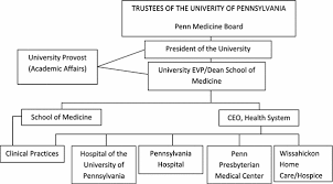University Of Pennsylvania Organizational Chart Aligning Incentives In Health Care Physician Practice And