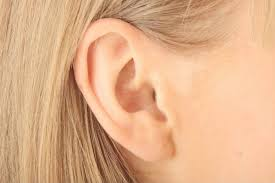 Does Daith Piercing For Anxiety Work E Counseling Com