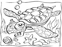 Printable Ocean Pictures Free Printable Ocean Coloring Pages For