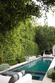 Lovely Lap Pool Width Ideas in Pool Traditional design ideas with basalt  courtyard formal gardens hedge hedge wall LystHouse is the simple way to  buy or ...