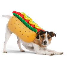 Thrills And Chills Halloween Hot Dog Pet Costume Size X