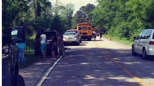 Fire chief: Pick-up truck hit Robeson County school buses, driver in ...