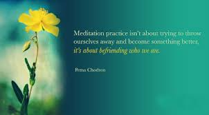 Pema Chodron Quotes Amazing Meditation Practice Isn't About Trying To Throw Ourselves Away And