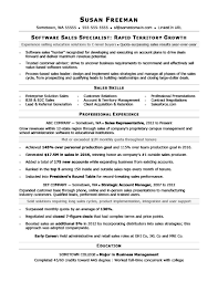 Sales Professional Resume Resume Work Template