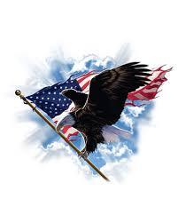 Patriotic Flying Eagle Crew Neck Sweatshirt