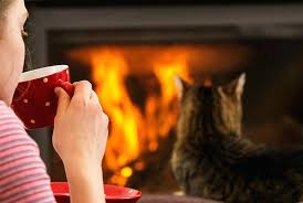 procom gas heater benefits of sitting by a fire procom gas fireplace logs