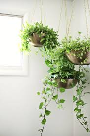 Hanging planters out of metal bowlslove this! (click through for tutorial)  ...