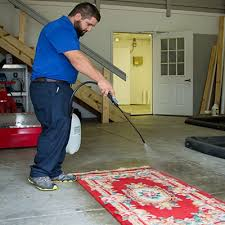 gainesville oriental rug cleaning