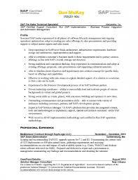 sap bw resume samples sap bi consultant resume sample camelotarticles com throughout bw 13