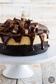 Peanut Butter Cup Ice Cream Cake Taste And Tell