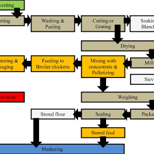 Mills Feeding Chart Flow Chart Of A Small Scale Milling Operation For Root Crops