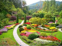 garden flowers. Flower Gardens Arranged Artistically, Are Known As Knot Gardens. Designed By A Systematic Composition Of Plants, Herbs And Shrubs. Garden Flowers