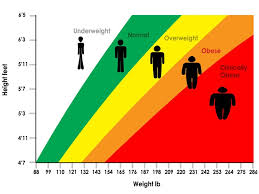 Are You Obese Chart 5 Things The Scale Cant Tell You About Your Health