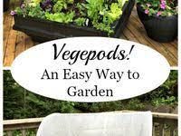Сад: лучшие изображения (1252) | Садовые идеи, Сад и ...
