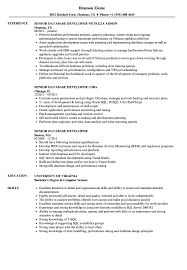 Database Developer Sample Resume Senior Database Developer Resume Samples Velvet Jobs 17