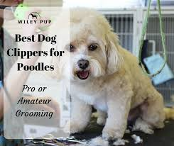Andis Poodle Chart Best Dog Clippers For Poodles 2019 Edition Easy Grooming Wileypup Com
