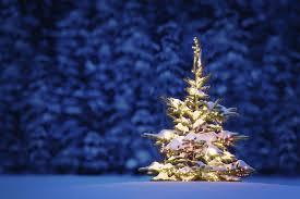 christmas snow wallpaper hd. Exellent Wallpaper Christmas Snow  Images Pictures Wallpapers On  WallpapersWeb Gallery To Wallpaper Hd S