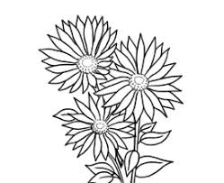 Small Picture Pics Of Daisy Flower Coloring Pages I Love My Grandma Coloring