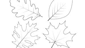 leaves coloring pages printable large maple leaf stencil printable coloring page of leaves printable leaves coloring
