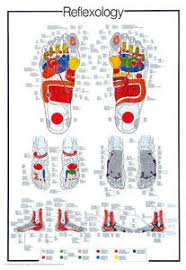Reflexology Pressure Points Chart Huge Reflexology Foot Reflex Pressure Points Info Packed