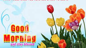 8378 Good Morning Quote Facebook Whatsapp Status Good Morning Gif