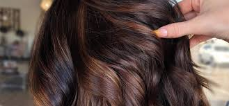 Light Chocolate Brown Hair Color Pictures Brown Hair Colours Chocolate Bronze Ash Brown And More