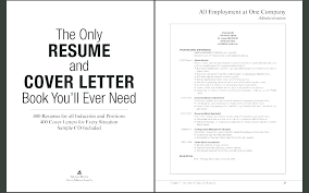 Resume Cover Page Example Beauteous Cover Pages For Resumes Netdoma