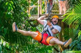 Image result for belize city zipline