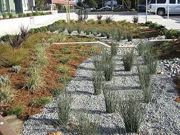 Small Picture 459 best Rain gardens images on Pinterest Rain garden Garden