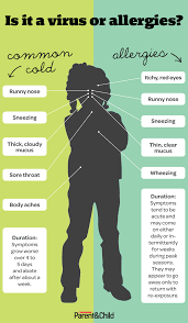 Cold Vs Allergy Symptoms Chart Their Achoos Are Head Scratchingly Similar Use Our Chart To
