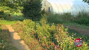 Image result for hope eco farms aylmer