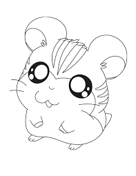 Small Picture Chinchilla coloring page Chinchilla free printable coloring