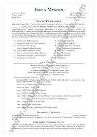 Functional Format Functional Resume Example Resume Format Help