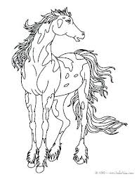 Horse Coloring Pages Printable Printable Race Horse Coloring Pages
