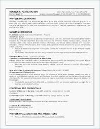 What To Write In A Resume Summary Simple Examples Of Resume Summary Fresh Pictures Of Resumes Unique