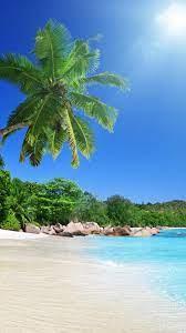 🥇 Tropical beach wallpaper