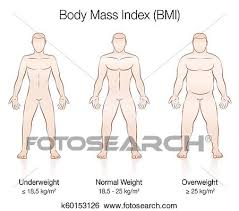 Underweight Normal Overweight Obese Chart Body Mass Index Bmi Male Body Thin Fat Normal Clip Art