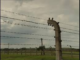 barbed wire fence concentration camp. SD Rights Managed Stock Footage # 921-000-011 Barbed Wire Fence Concentration Camp