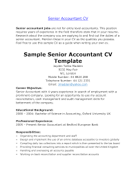 Accountant Resume Format For Accountant