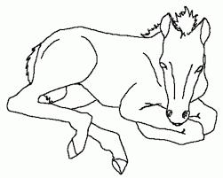 Afbeeldingen Kleurplaten Paarden Archidev Kleurplaat Paard Tinker