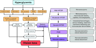 Diabetes Type 2 Pathophysiology Flow Chart Update On Animal Models Of Diabetic Retinopathy From